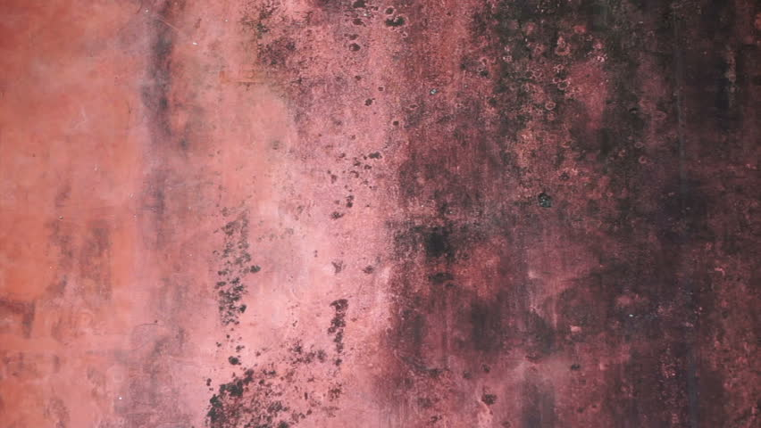 Red Old Mold Wall Texture Stock Footage Video (100% Royalty-free) 17364253  | Shutterstock