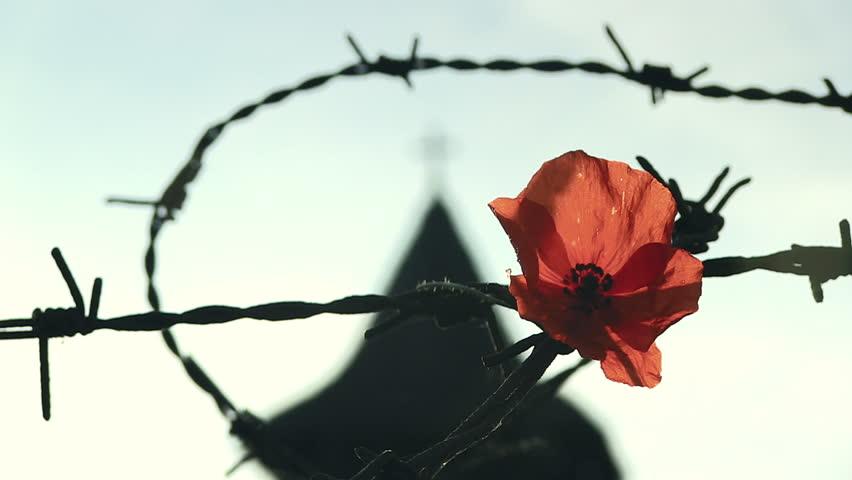 Открытка, открытки к дню памяти жертв политических репрессий