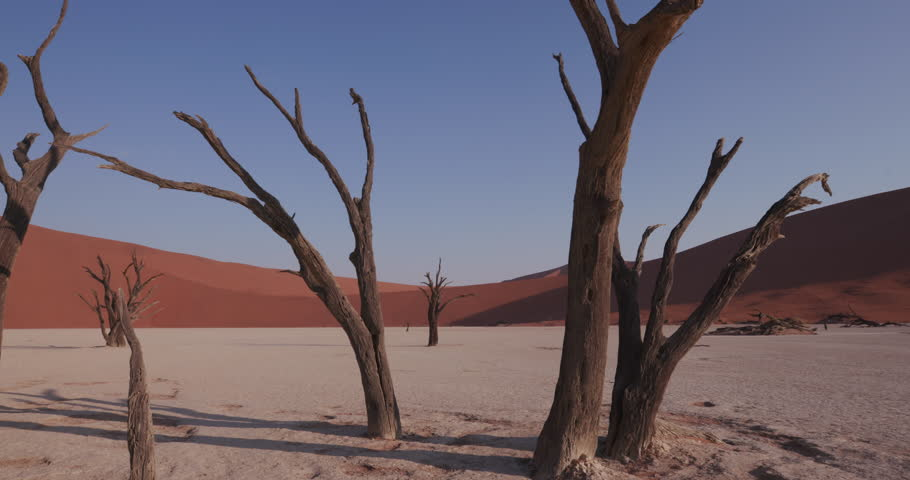4K moving shot of dead trees in Dead vlei inside the Namib-Naukluft National Park | Shutterstock HD Video #17560195