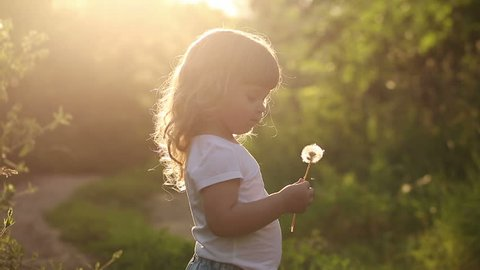 Cute little girl blow on a dandelion. Rest at nature. Slow motion