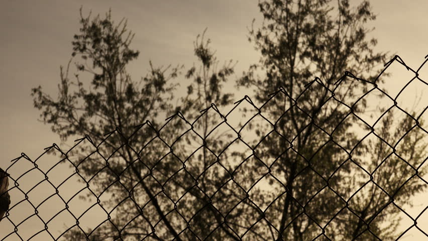 Metallic fence at sunset: freedom, borders -change of focus- | Shutterstock HD Video #17725633