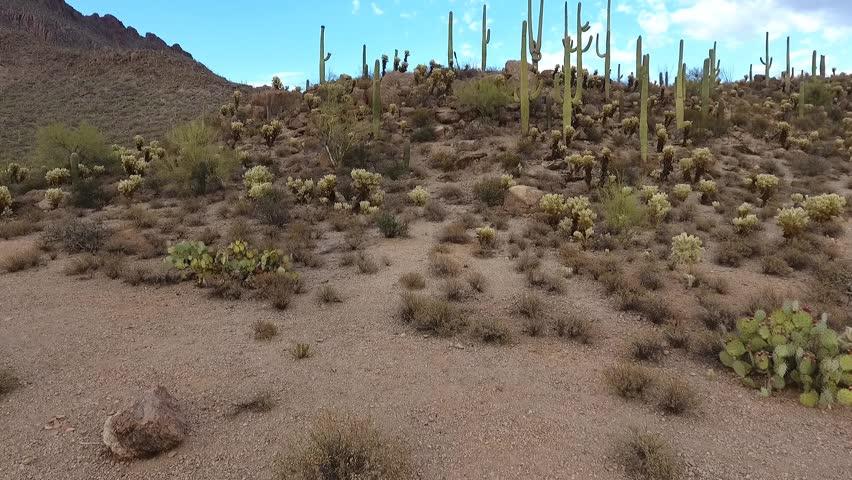 Ascending aerial shot of a desert landscape