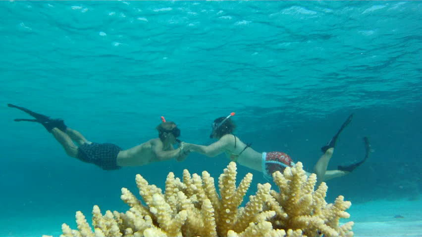 Young couple are swimming towards each other in the Red Sea near coral with fish, and then come up together, holding hands.