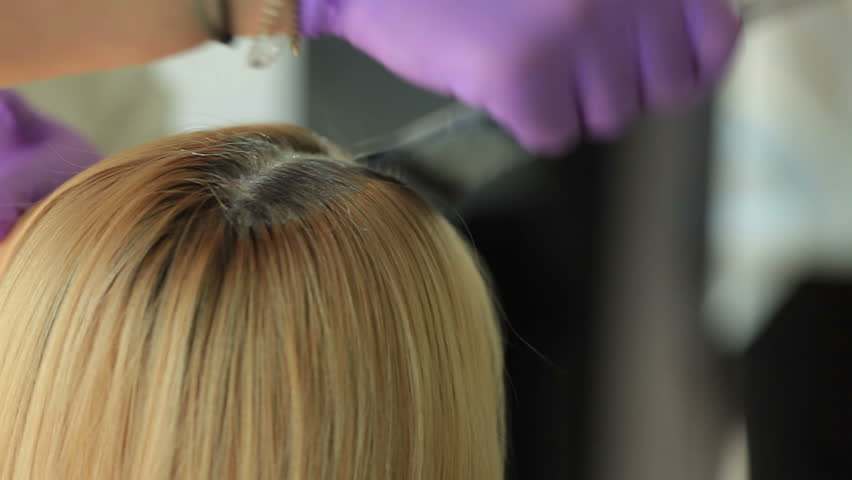 Stylist Hairdresser Makes Hair Coloring, Blonding, Coloring Hair ...