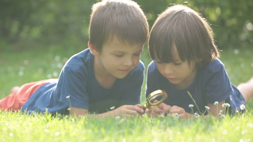 Beautiful happy children, boy brothers, exploring nature with magnifying glass, summertime