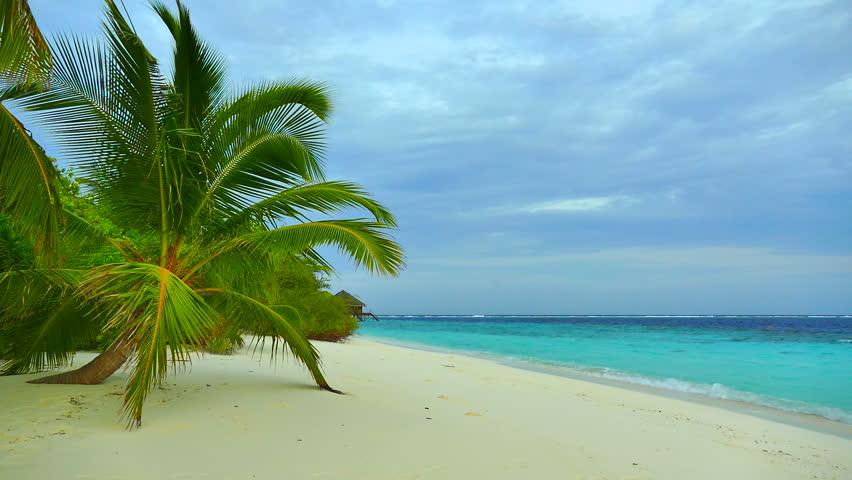 Beautiful tropical beach and sea in maldives island | Shutterstock HD Video #18353203