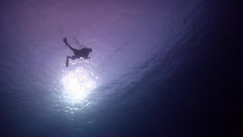 Distant scuba diver swimming in bluewater, HD, UP25662 #18436063