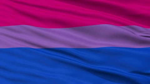 Bi Sexual Flag, Close Up Realistic 3D Animation, Seamless Loop - 10 Seconds Long