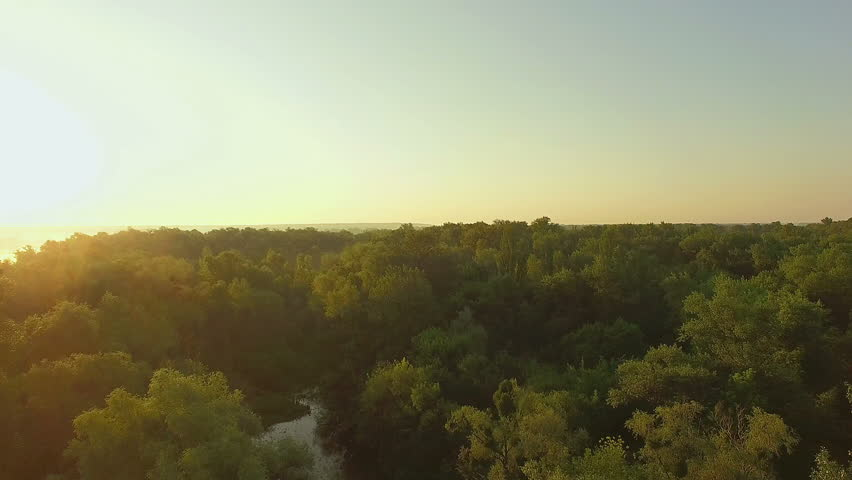 Aerial view of river at sunrise 4K, forest and river in morning mist, Very high view of the river forest at sunrise, Aerial view of mystical river at sunrise with fog | Shutterstock HD Video #18555083