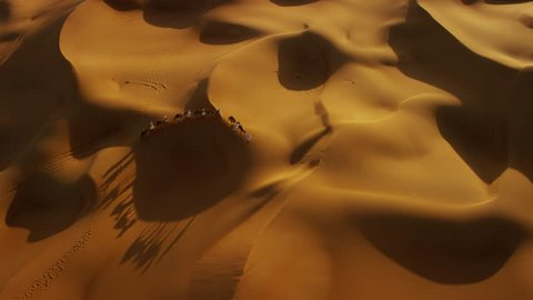 Aerial drone of camel train travelling across a Middle Eastern desert