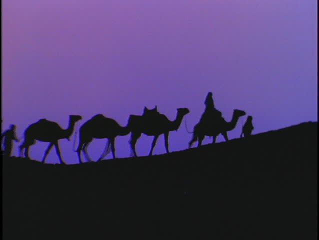 A caravan of camels silhouette against a purple sky.