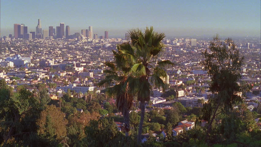 Day tilt down neighborhood houses Los Angeles hills Fairly smoggy day, palms foreground | Shutterstock HD Video #19071283