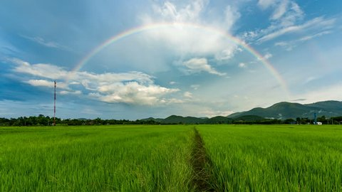 Time lapse - rainbow over rice field