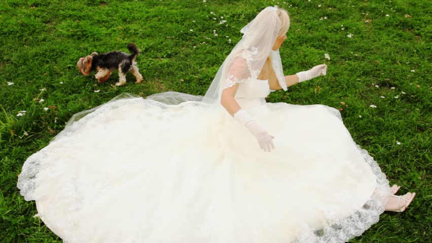 blonde in white wedding dress sits on lawn and plays floret with small doggie