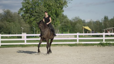 SLOW MOTION, CLOSE UP, DOF: Dark dressage horse riding sideways trotting haunches-in in big sandy manege. Female dressage rider and horse doing a lateral work traver element in outdoors riding arena