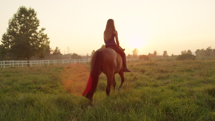 SLOW MOTION, CLOSE UP: Beautiful young Caucasian blonde girl bareback riding mighty brown horse on vast meadow field on misty morning into the sunrise. Amazing relaxing ride into golden sunset