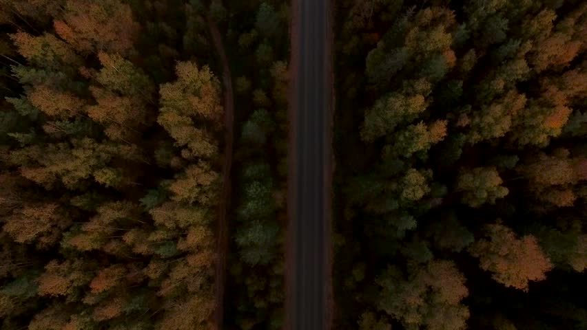 Aerial Flight over the road between fields. Autumn colors. | Shutterstock Video #19679488