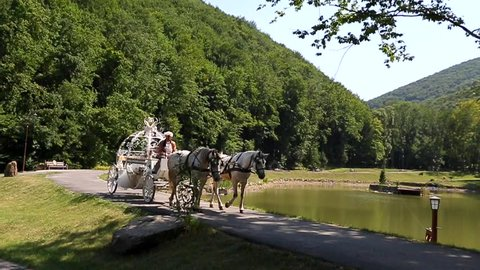 Wedding Carriage Heading for Princess Castle. HD Slow motion