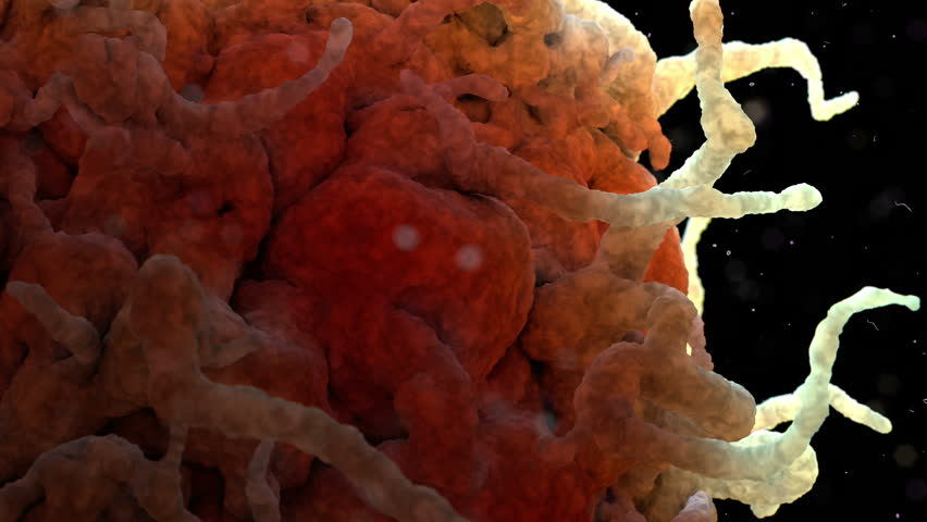 White Blood Cell 002 3D Rendering: Scanning electron microscope image of a white blood cell.