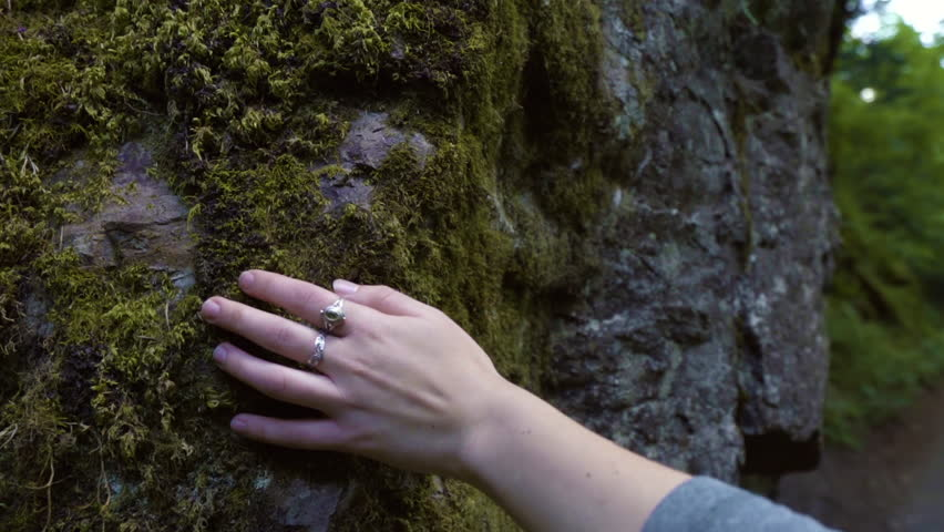 Closeup Of A Young Woman's Hand, As She Touches A Mossy Cliffside, Slow Motion