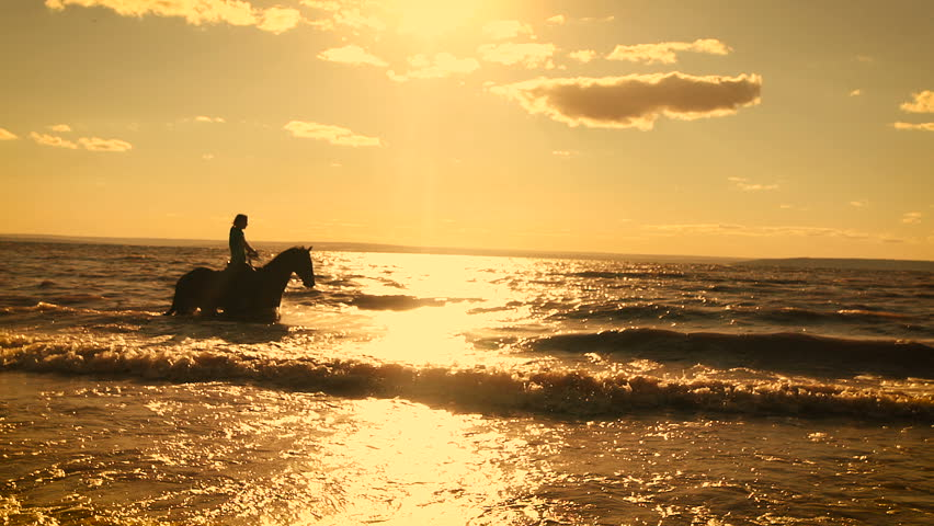 Horse-riding at the beach on sunset background. Galloping at the water. Beautiful view. Power of nature