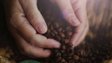 Woman picking up in the palm of a handful of coffee beans lying in a basket. Close-up