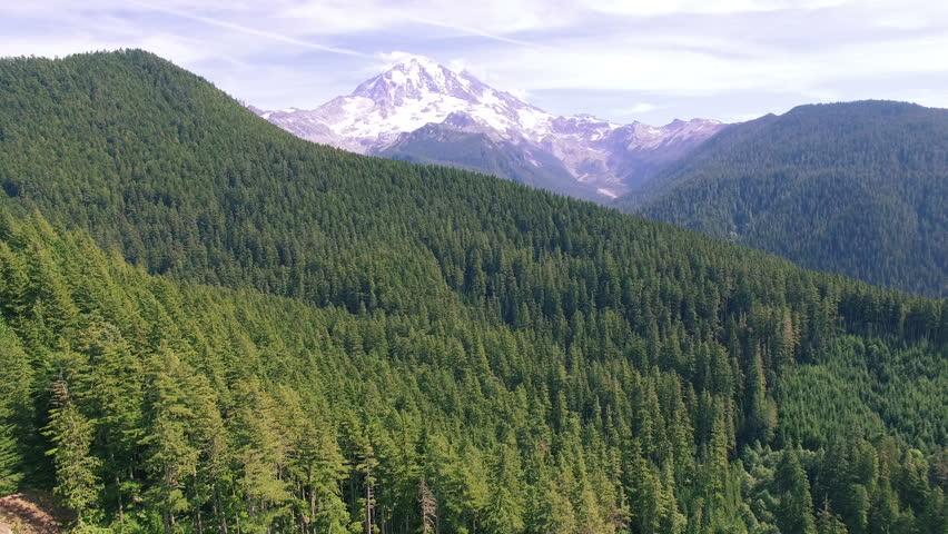 4K aerial view Seattle backward Mount Rainier