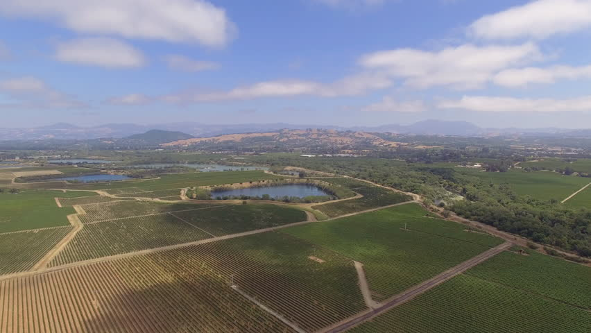 Aerial view of California Wine Country. Sonoma, CA