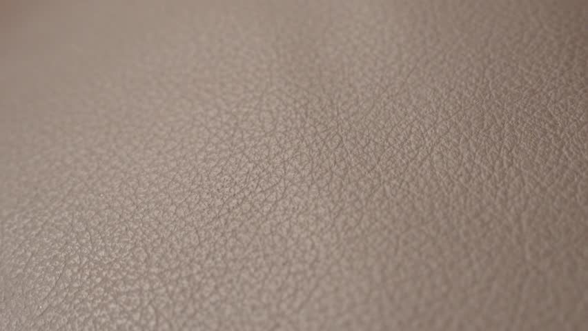 Animal Skin Leather Sofa Detailed Stock Footage Video 100 Royalty Free 21943573 Shutterstock