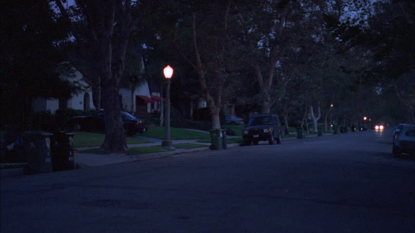 Driving Plate, Rear View, Night. Tree-lined Road Through