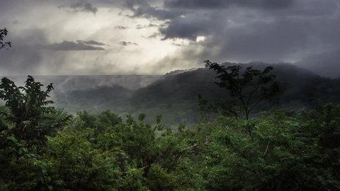 Wide shot on tropic rainforest jungle, mist, fog, rain, clouds move in timelapse footage. Green landscape.