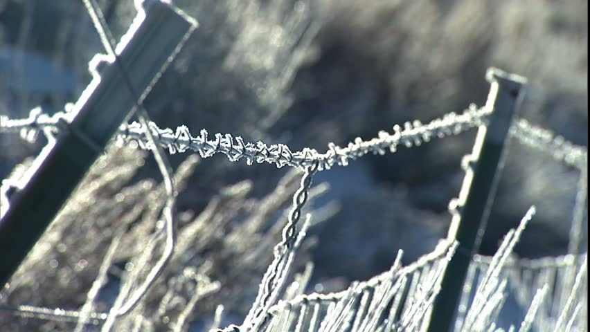 Frosty barbed wire fence in snow to sun peaking over mountain top January/2004, Park City, Utah