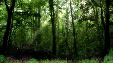 Quiet scene in the enchanted jungle