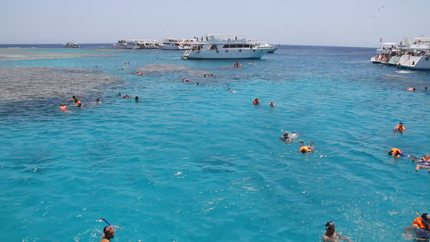 HURGHADA, EGYPT - JULY 5: Tourists dive and swim in the Red Sea on July 5, 2011 in Hurghada, Egypt.