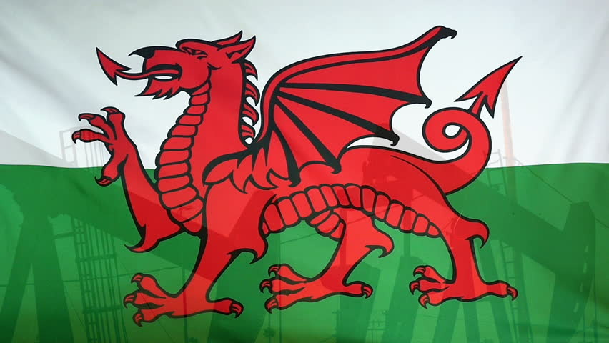 Green And White Flag With Dragon