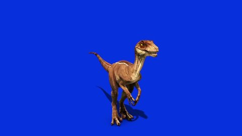 Dinosaurs Velociraptor Roar Front Jurassic World Prehistory Blue Screen