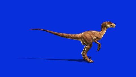 Dinosaurs Velociraptor Attacks Side Jurassic World Prehistory Blue Screen