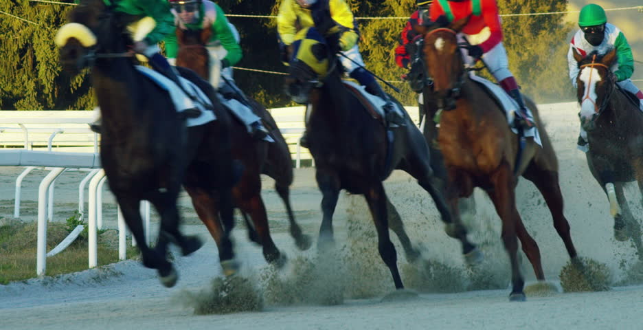 Milan - Jan 04, 2017 -shooting in slow motion in a hippodrome of competing horses to finish first and be the fastest ridden by jockeys.Concept:betting app for betting,poker, gambling,racing and speed