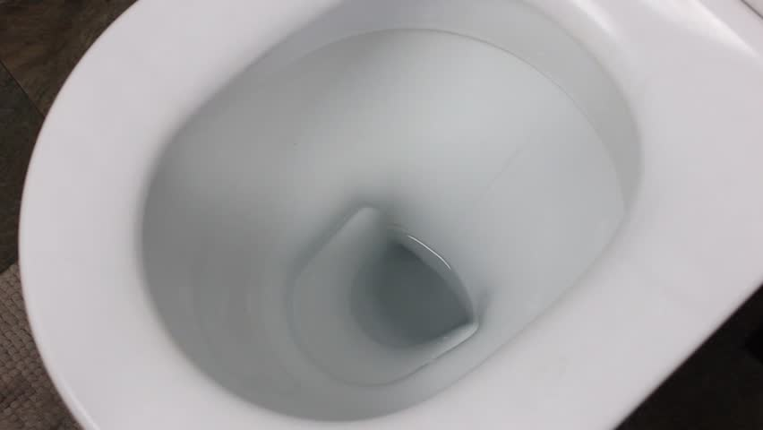 flushing and closing toilet. (close-up)