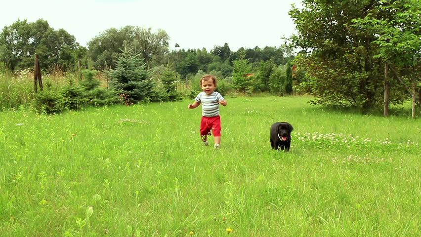 Young baby boy playing with little dog on the grass, slow motion