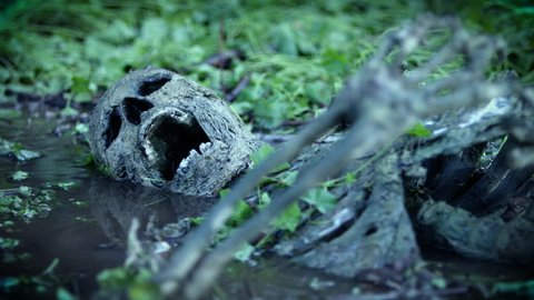 Skeleton in River, during rain camera rack focuses from hands to skull