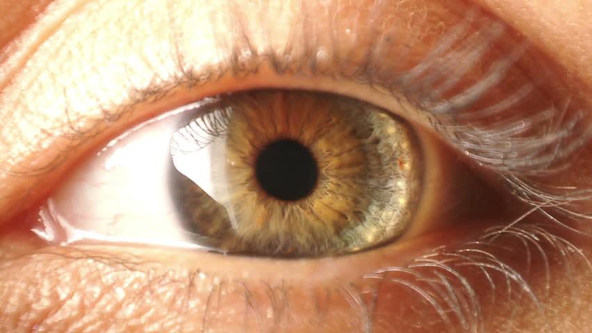 Eye iris contracting | Shutterstock HD Video #2394440