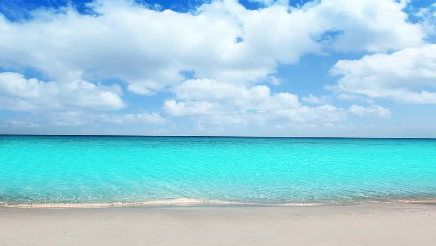 Idyllic tropical turquoise beach in caribbean sea with white sand shore