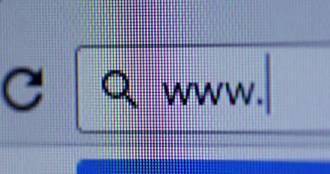 Close up of search bar with WWW text and cursor. Internet Search Concept