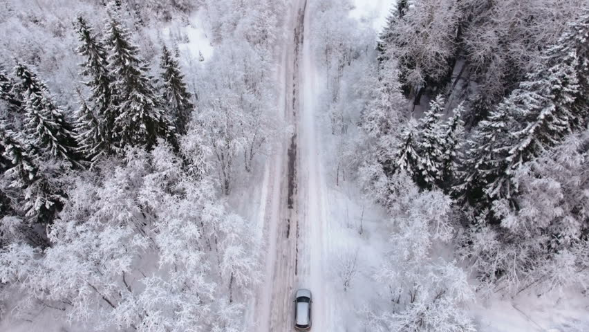 Silver car driving on winter country road in snowy forest, aerial view from drone | Shutterstock HD Video #24624395