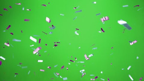 Real Confetti falling  soft and beautiful in the colors light blue and purple with  Green screen for party and celebrations
