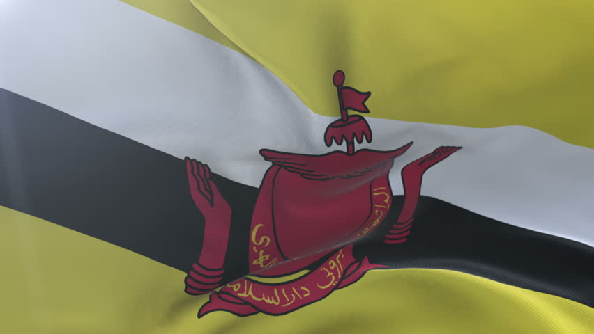 Brunei Flag Footage Page 3 Stock Clips