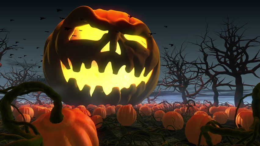 King of pumpkins. Horror Halloween 3d animation. Giant jack o' lantern rolling by  pumpkin field #2508533