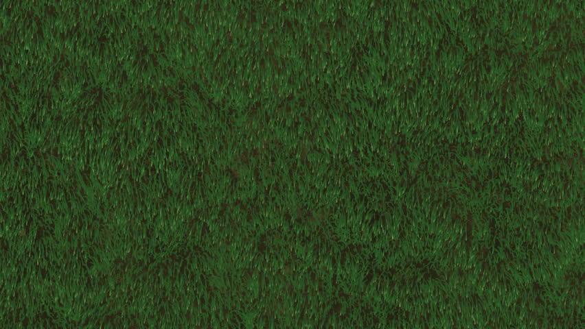 Grass field loop animation of grassy field seamlessly loopable grass field loop animation of grassy field seamlessly loopable stock footage video 2529623 shutterstock voltagebd Images