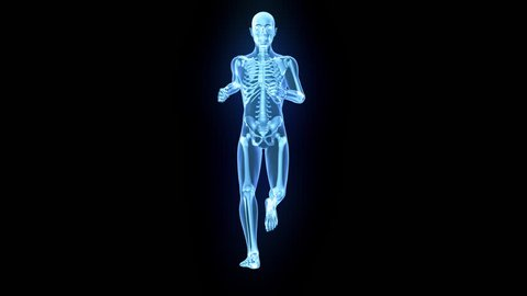 X-Ray of human 3D model running with matte key included